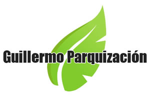 Guillermo Parquizaci�n